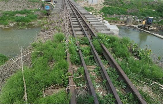 옛 수인선 철로와 생태탐방에 참여한 시민들